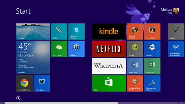 open-windows-store-windows-8.1