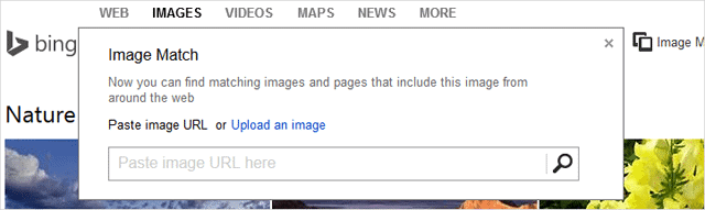 Bing's New Image Match Feature Lets You Reverse Search Any Image