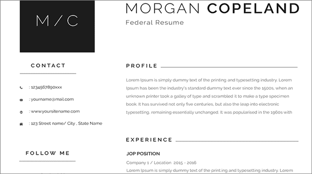 40 free federal resume template