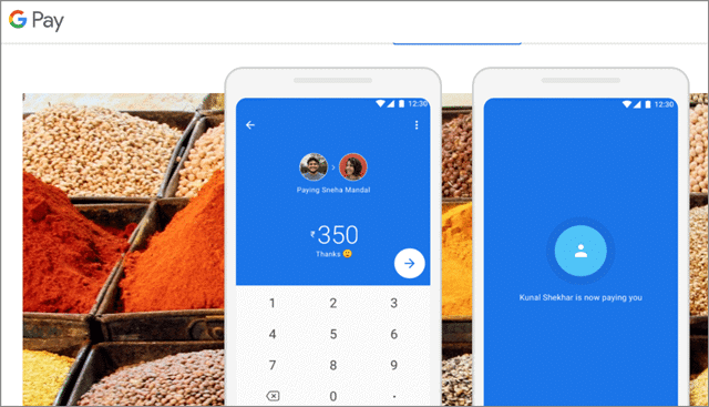 8 google pay alternative to paypal