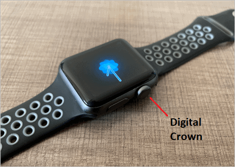 Digital Crown on the Apple Watch
