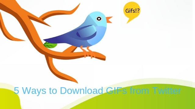 5 Ways To Download and Save GIFs From Twitter on PC or