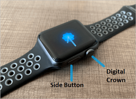 Side Button and Digital Crown button on Apple Watch