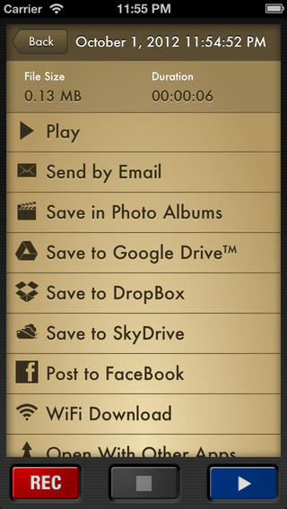 VRP Provides a ton of options to save your recordings