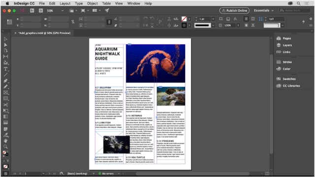 InDesign frame with a news template in it