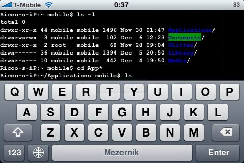 older-screenshot-iphone-mobileterminal