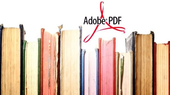 convert pdf to word docutment