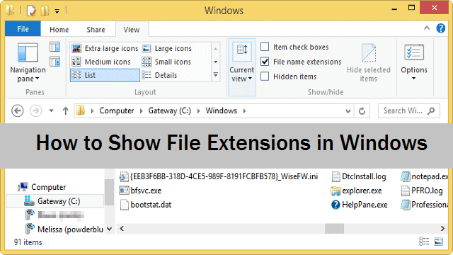 showing-file-extensions-in-windows