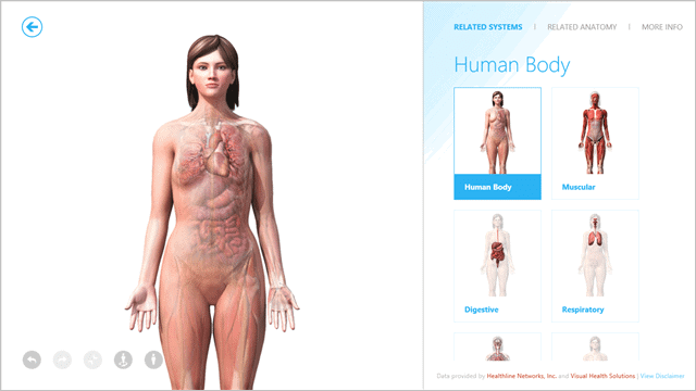 3d-human-body-model-windows-8.1