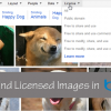 Find Creative Commons Images Using Bing's Search-by-Licence Filter
