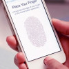 Touch n Go: All You Need to know about the Touch ID Sensor on Your iPhone