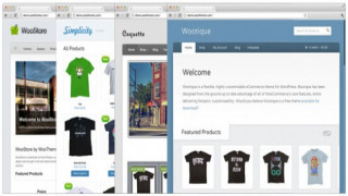 Start Your Own Online Store Using WordPress with WooCommerce From WooThemes