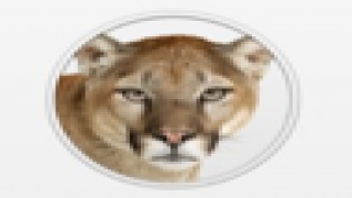 A General Review of The Preview for Mountain Lion