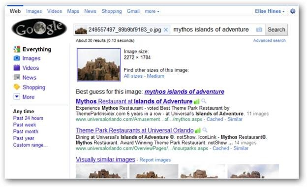 Google Image Search Feature in action