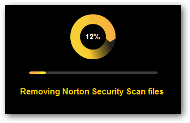 Removing Norton Security Scan files